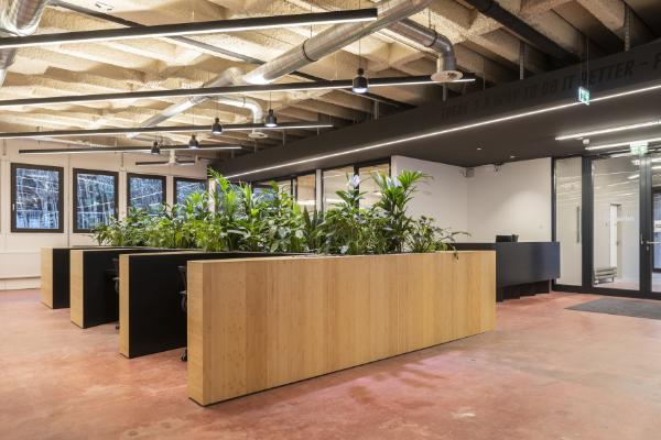 dshub – eg halle, pflanzlement mit integrierten arbeitsplätzen